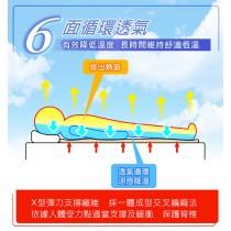 日虎 MIT 超舒眠 6D 透氣涼墊 可水洗 / 無甲酫 / 抑菌防蟎超透氣 ( 單人90*186*10)